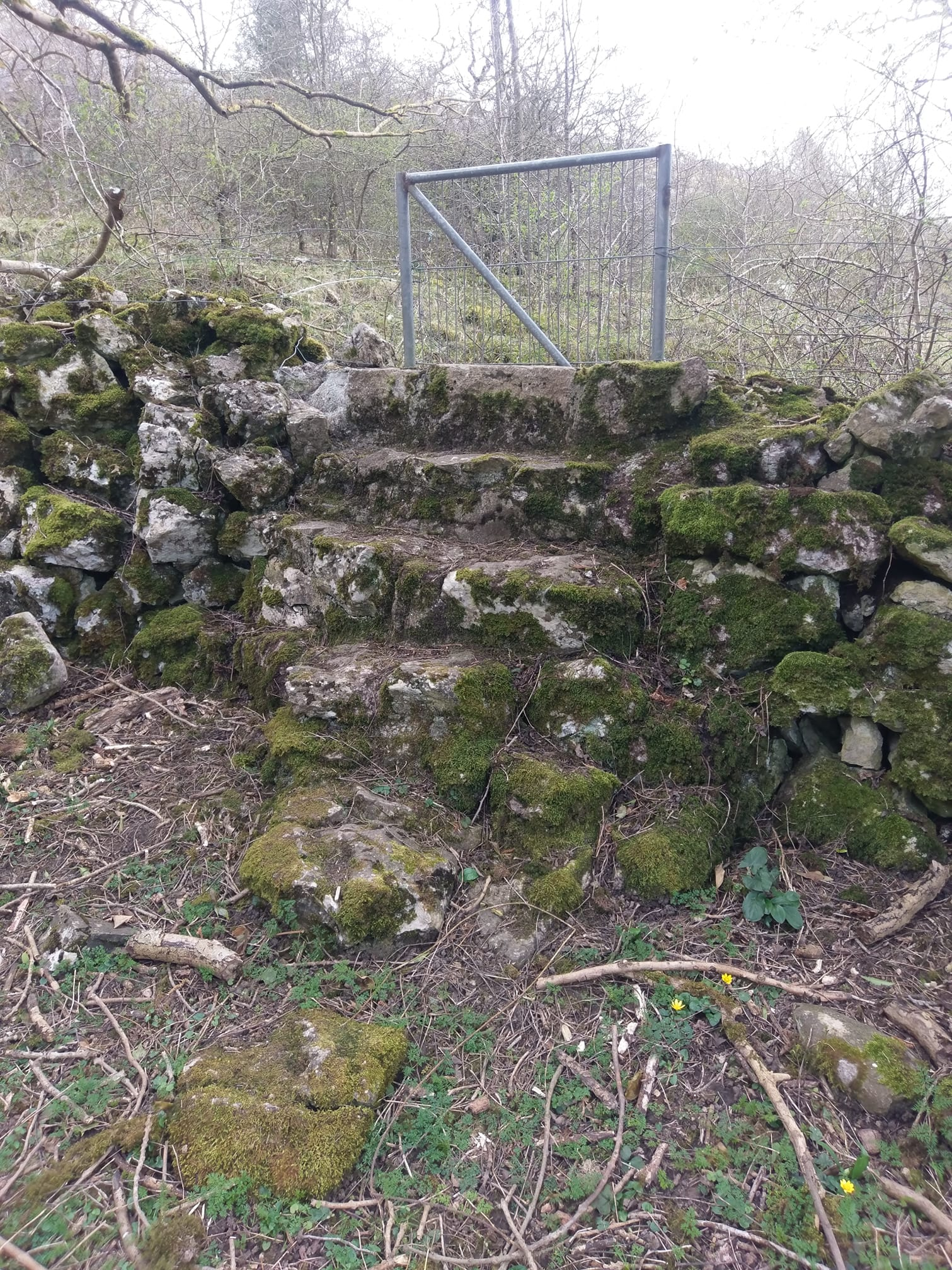Spotted these lovely lime stone steps today while walking in northwales. North Wales, North West, Wirral, Liverpool & Cheshire UK